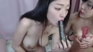 2 Korean girls eat pussy with toys on cam